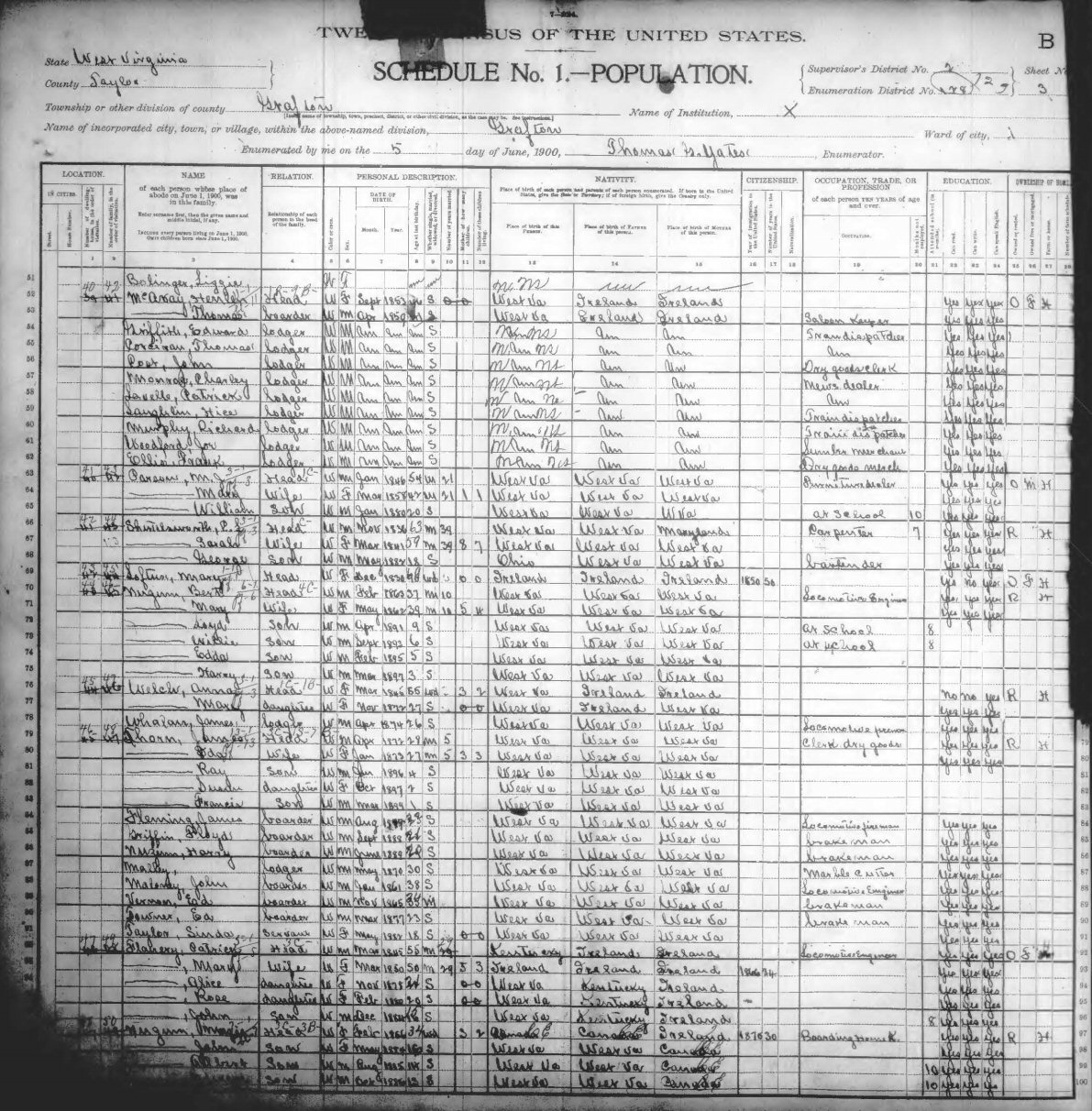 Taylor County WV 1900 TV Census Index – Insolvency Worksheet